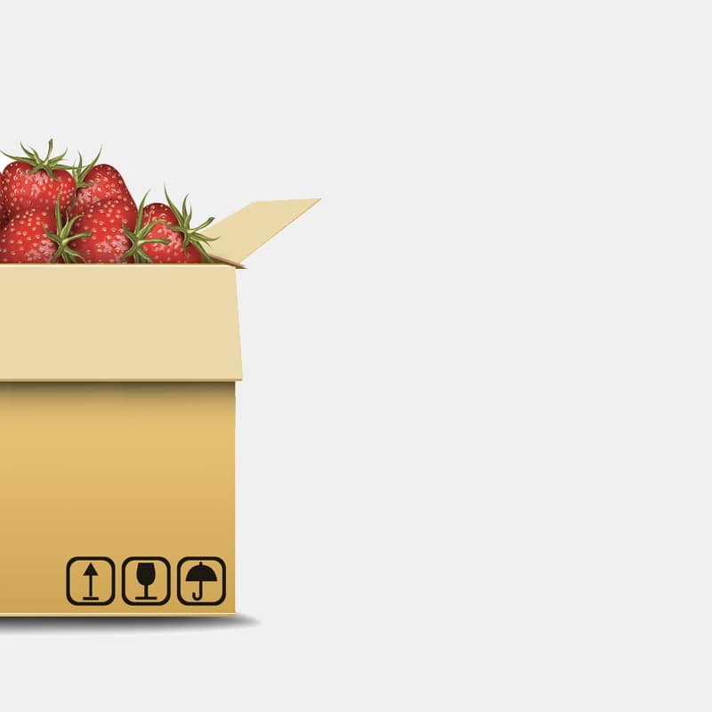 strawberry-branding-packaging-1