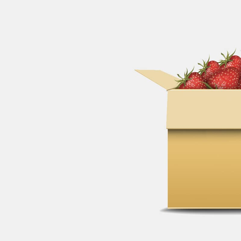 strawberry-branding-packaging-2